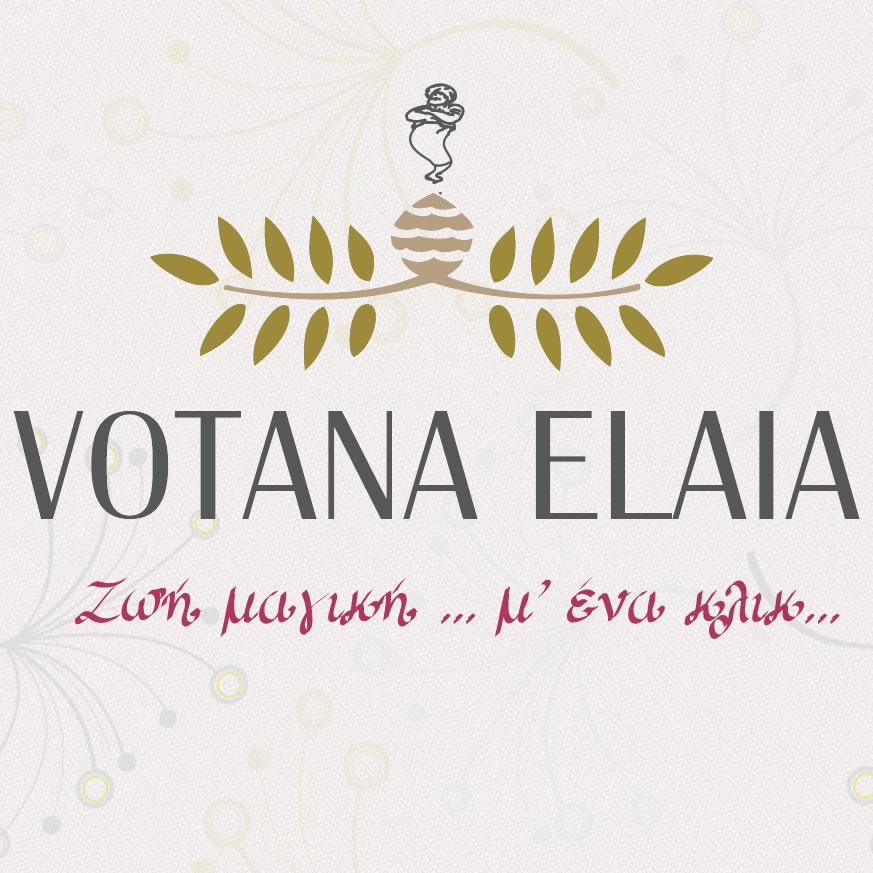 ve_logo_fb_sqaure